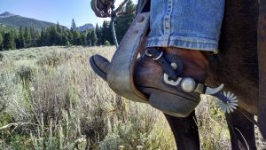 hollywood la horsebackriding tours