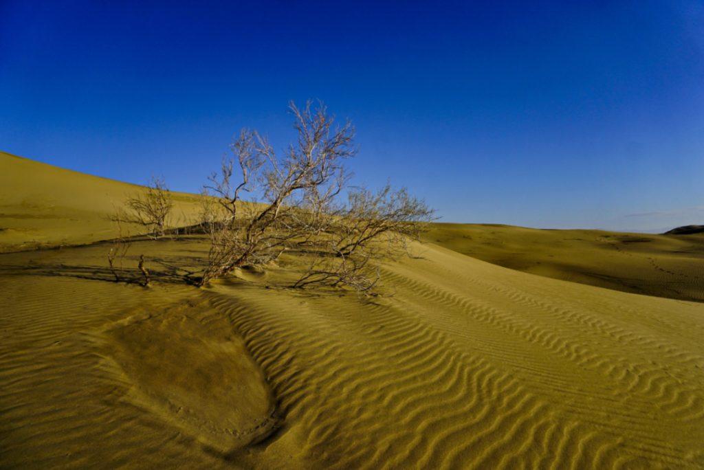 Varzaneh desert, Isfahan province, Iran